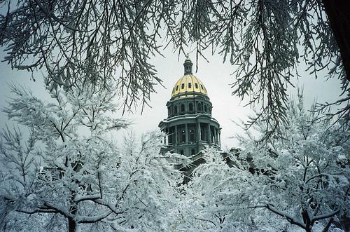 snowycapitol